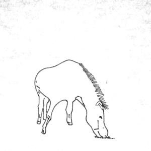 左側の草を食べるロバ