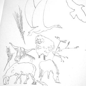 制作実績(動植物のイラスト)