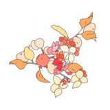 植物のペン画のメインカラー設定と配色工程