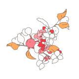 2016年に描いた植物のイラスト。ペンタブレットで配色する。中央部の木の実を配色する。