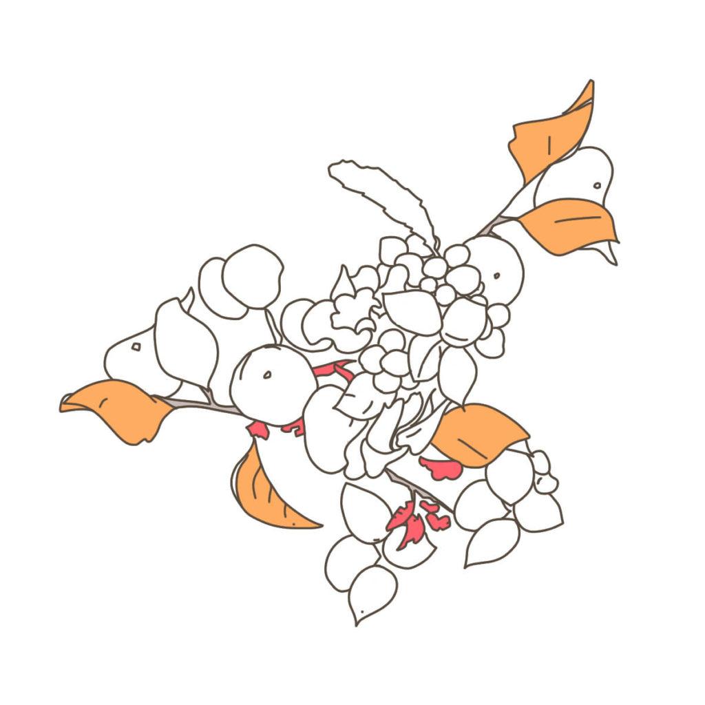 2016年に描いた植物のイラスト。ペンタブレットで配色する。外側の木の実を配色。